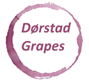 Dørstad Grapes | Vin